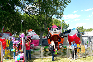 Bear Affair Carnival Ride