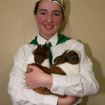 junior-rabbit-showmanship